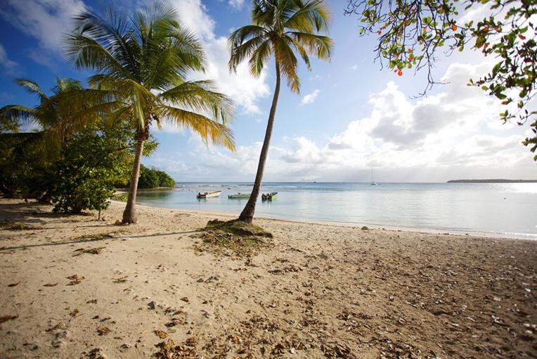 """Tourisme en Outre-mer: manque de visibilité """"très inquiétant"""" (agences de voyage)"""