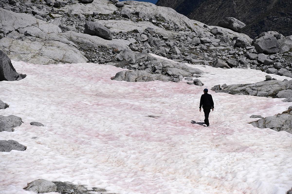 La mystérieuse neige rose d'un glacier des Alpes italiennes