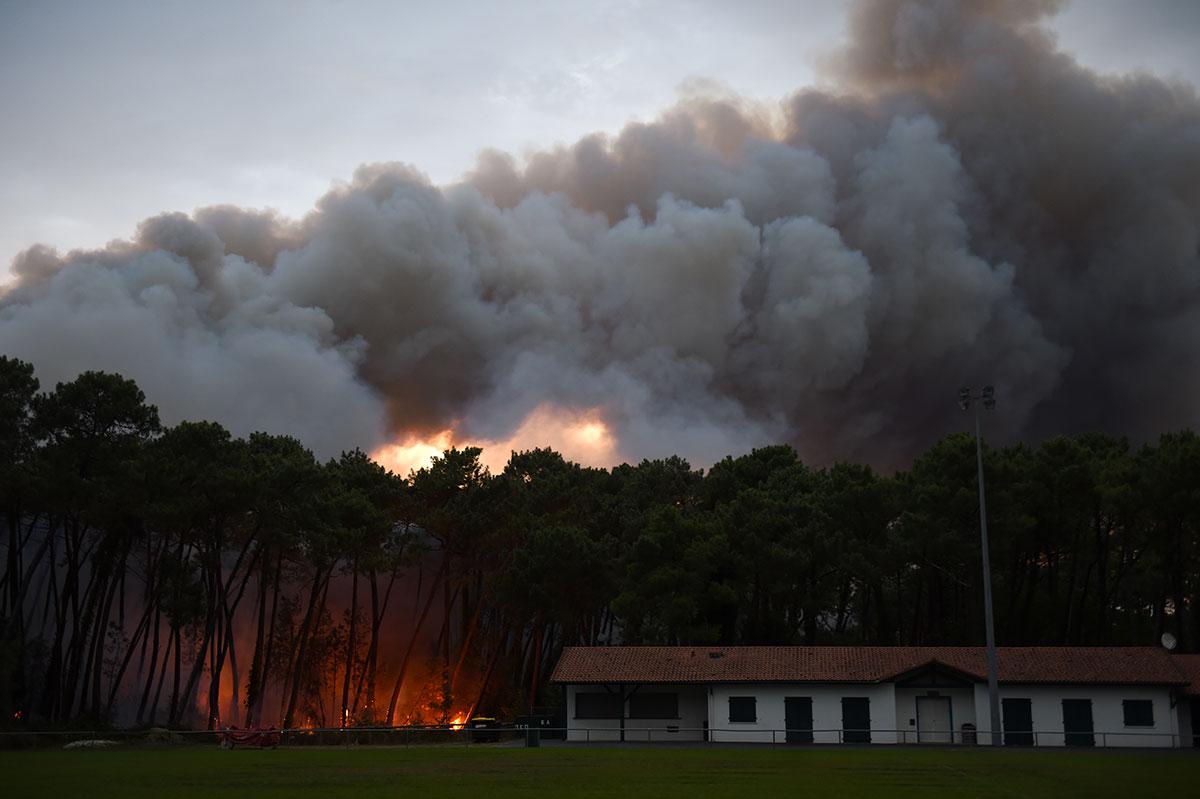 Important feu de forêt à Anglet: des habitants évacués, des maisons endommagées