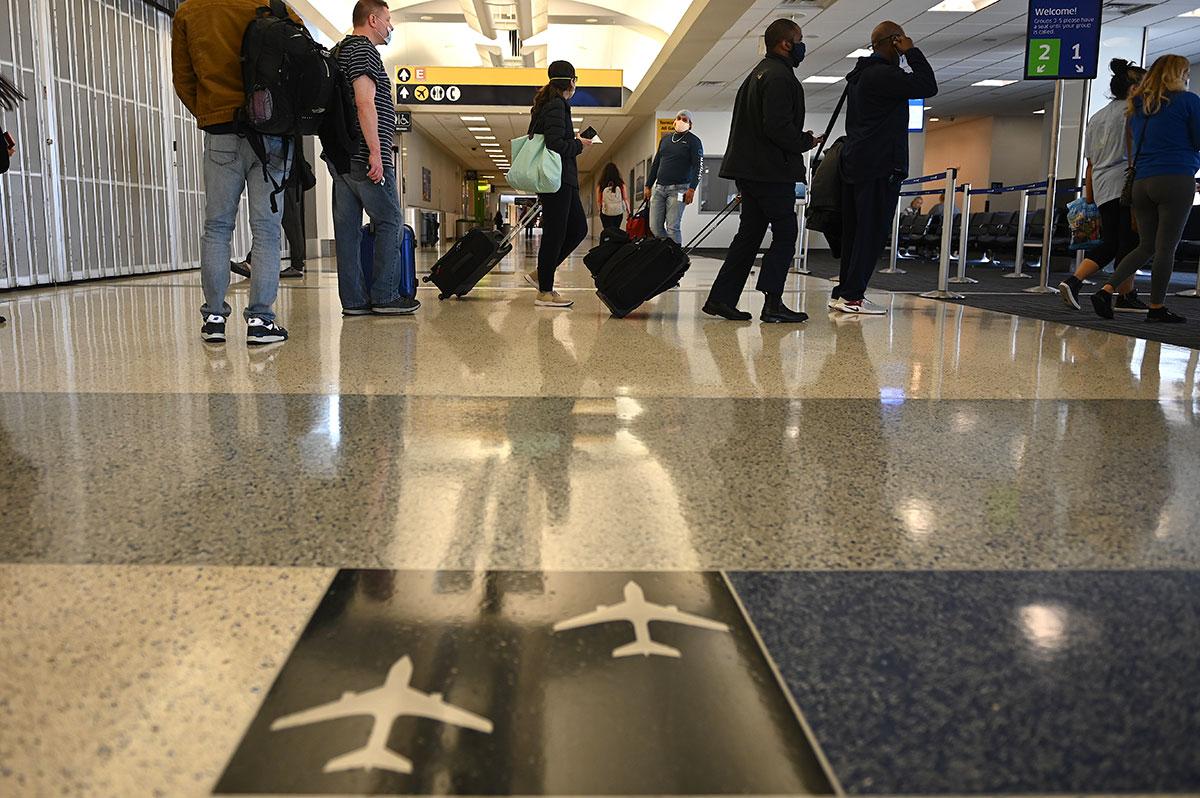 A l'aéroport de Francfort, une chienne des douanes renifle un quart de million d'euros