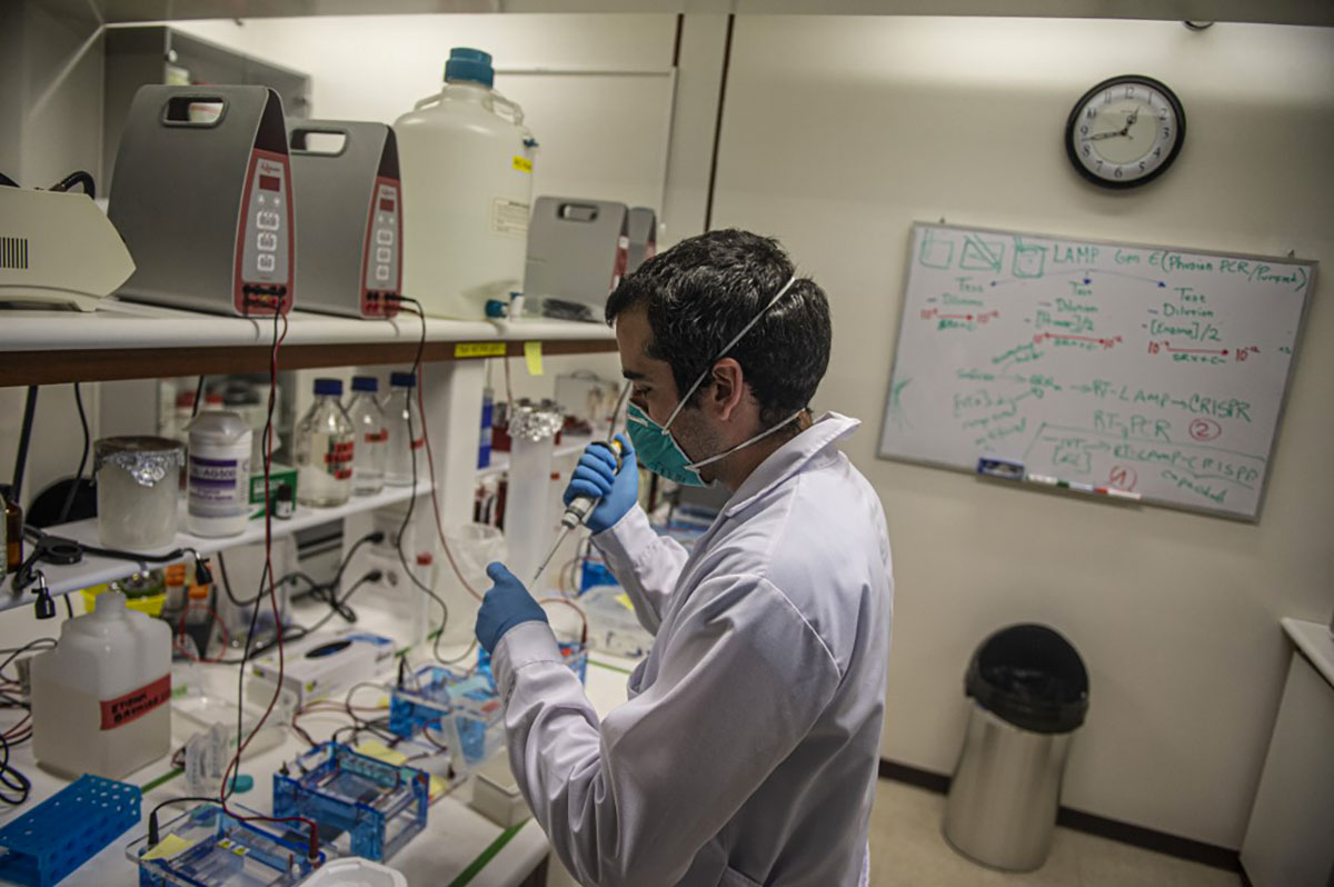 """Covid-19: des tests de dépistage rapides déployés """"cette semaine"""", annonce Véran"""