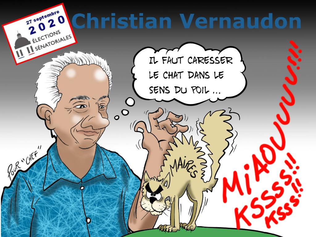 """""""Les sénatoriales"""", par Munoz"""