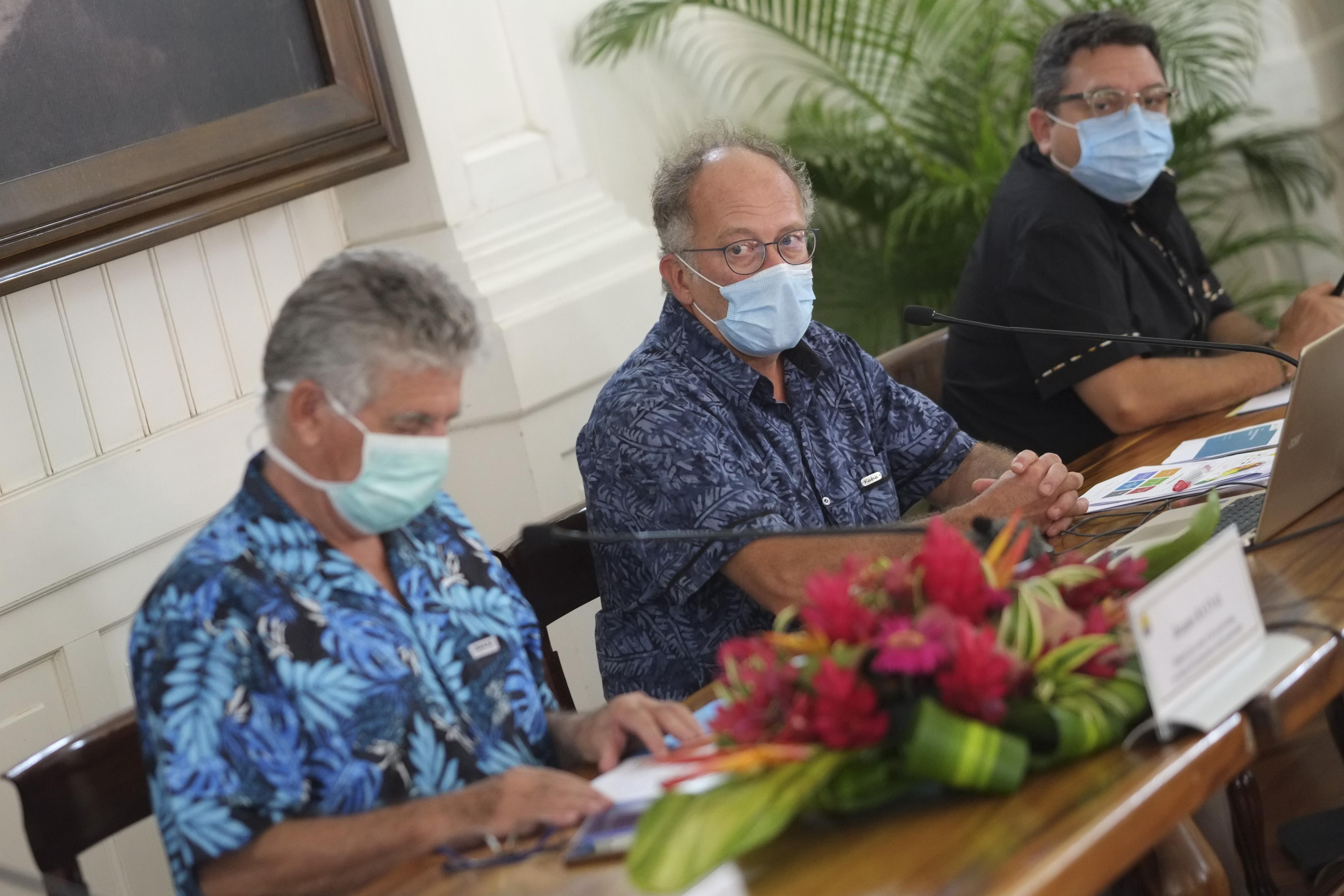 Sortie d'épidémie estimée en mai 2021, avec un pic en janvier