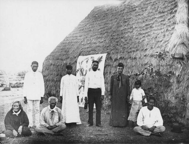 Un groupe d'Hawaiiens de Ni'ihau photographiés en 1885 par Francis Sinclair. Un tifaifai dans la plus pure tradition polynésienne orne le mur d'une de leurs maisons au toit de chaume.