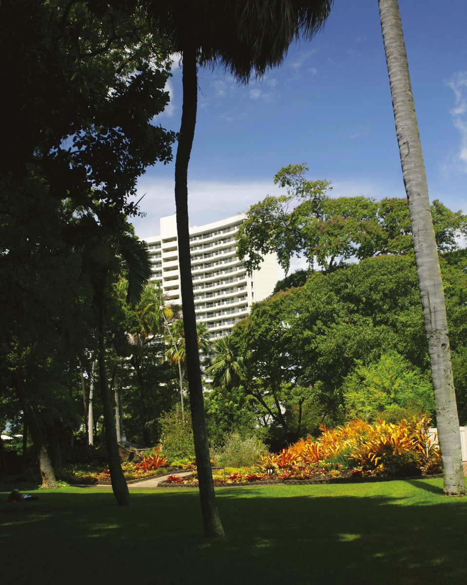 Une vue générale d'un coin fleuri du jardin, dominé par le béton du centre-ville. Un appartement en haut de cet immeuble ? Calme assuré !