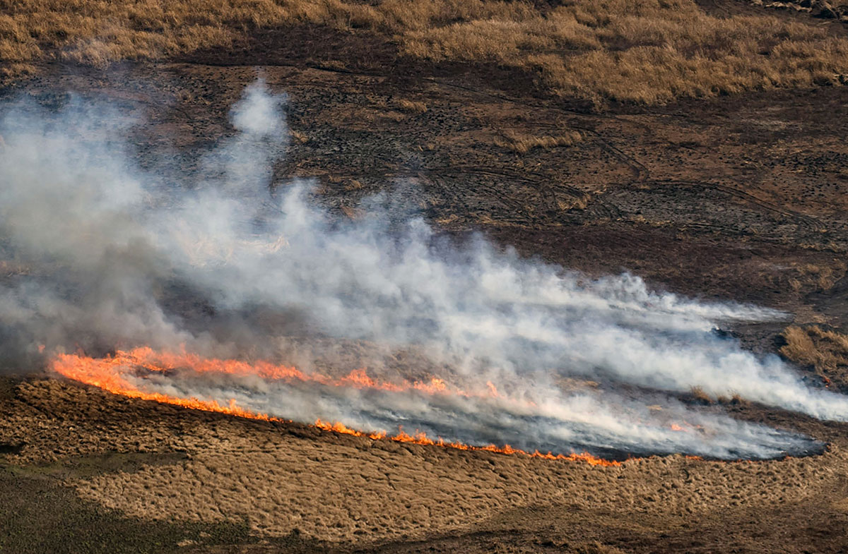 En Amérique du sud, une sécheresse et des incendies sans précédent