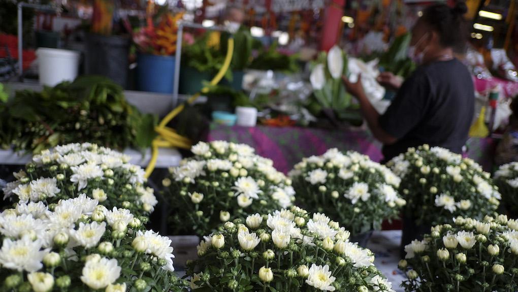 Des fleurs malgré le Covid pour la Toussaint