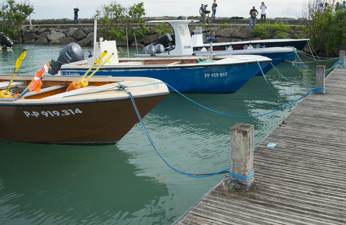 En Guadeloupe, finie la pêche au lambi, pour préserver la ressource