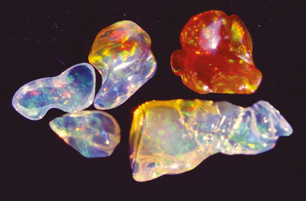 Très bel échantillon d'opales précieuses comme le Mexique peut en fournir ; ces pierres viennent juste d'être extraites de leur gangue de lave.