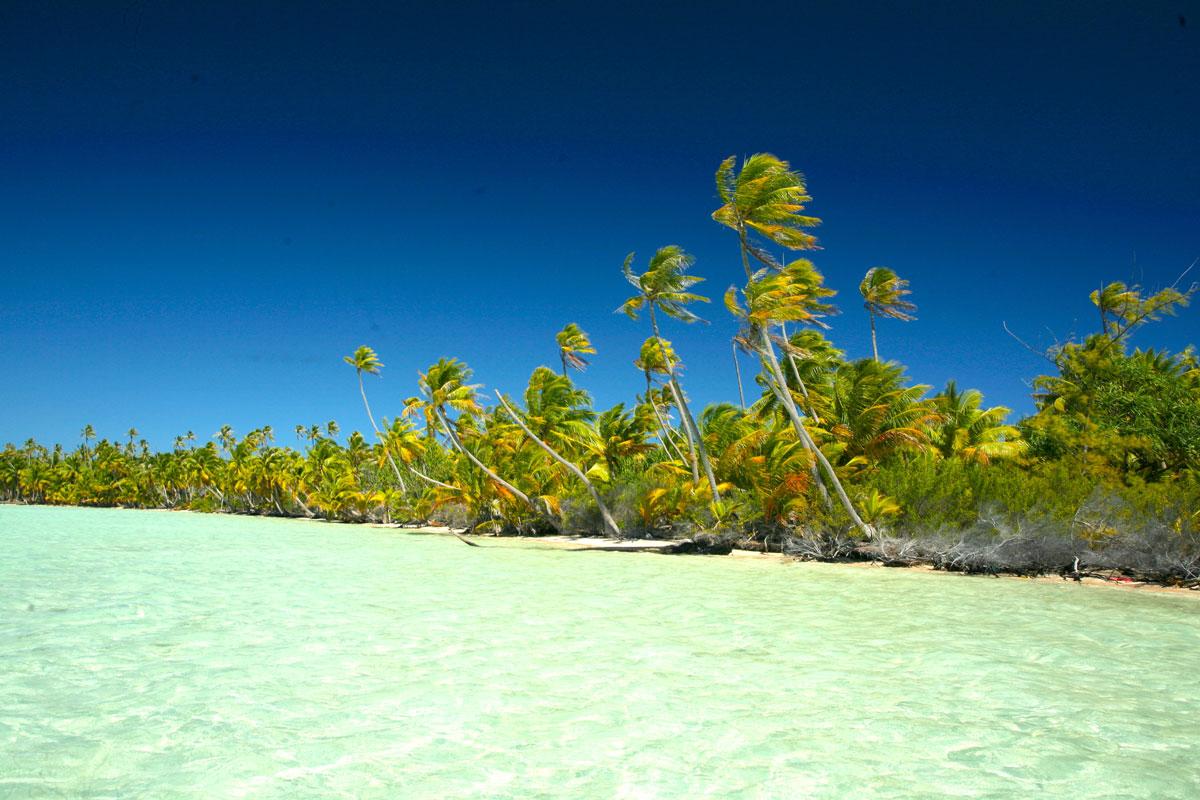Apparemment, Tematangi n'était pas une escale pour les navires visitant les Tuamotu afin d'y charger du coprah contre des denrées et des biens de consommation. Idem pour les nacres: à l'époque, il n'y avait pas de campagnes de plonge qui auraient permis aux habitants de gagner de l'argent et de s'approvisionner normalement.