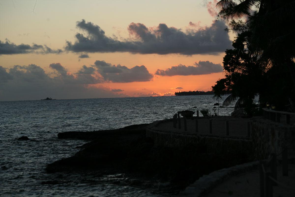 """Exilés de Tahiti quelques décennies avant le drame de la """"Sarah Ann"""", les habitants de Tematangi étaient plus des naufragés eux-mêmes que de robustes Paumotu capables de s'adapter à leur environnement."""