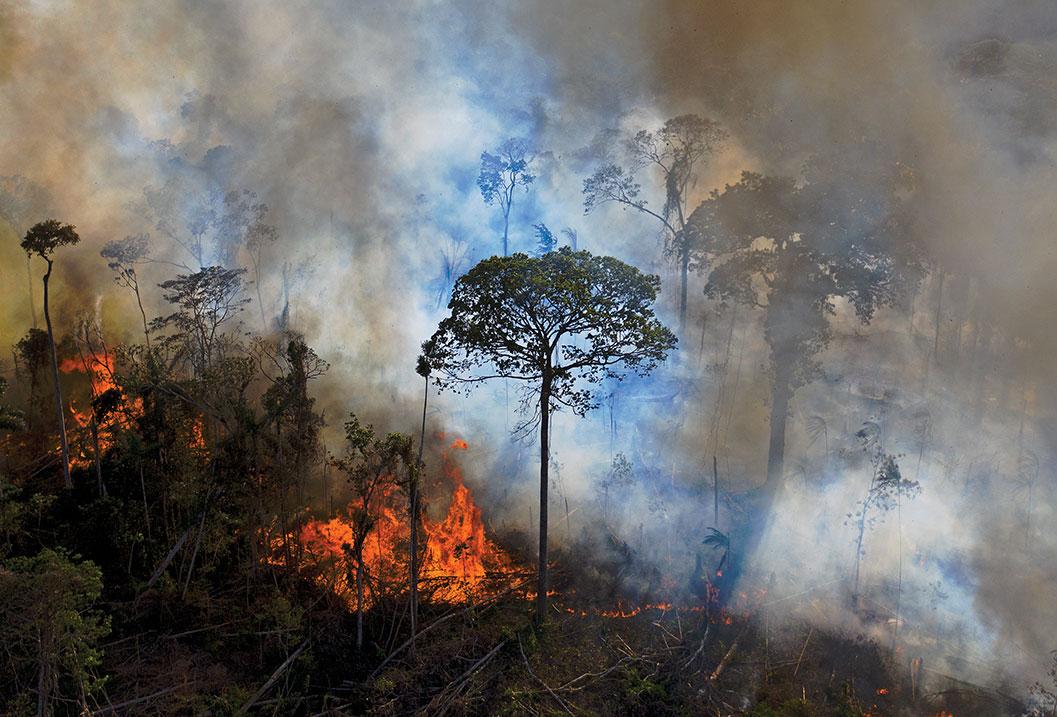 Brésil: les incendies de forêt au plus haut en dix ans