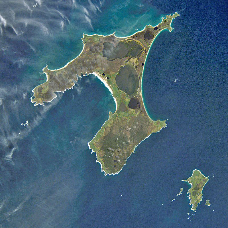 L'île principale des Chatham, baptisée Chatham et, au sud-est, l'île de Pitt. On distingue sur cette vue satellite les lacs occupant une partie de la grande île.