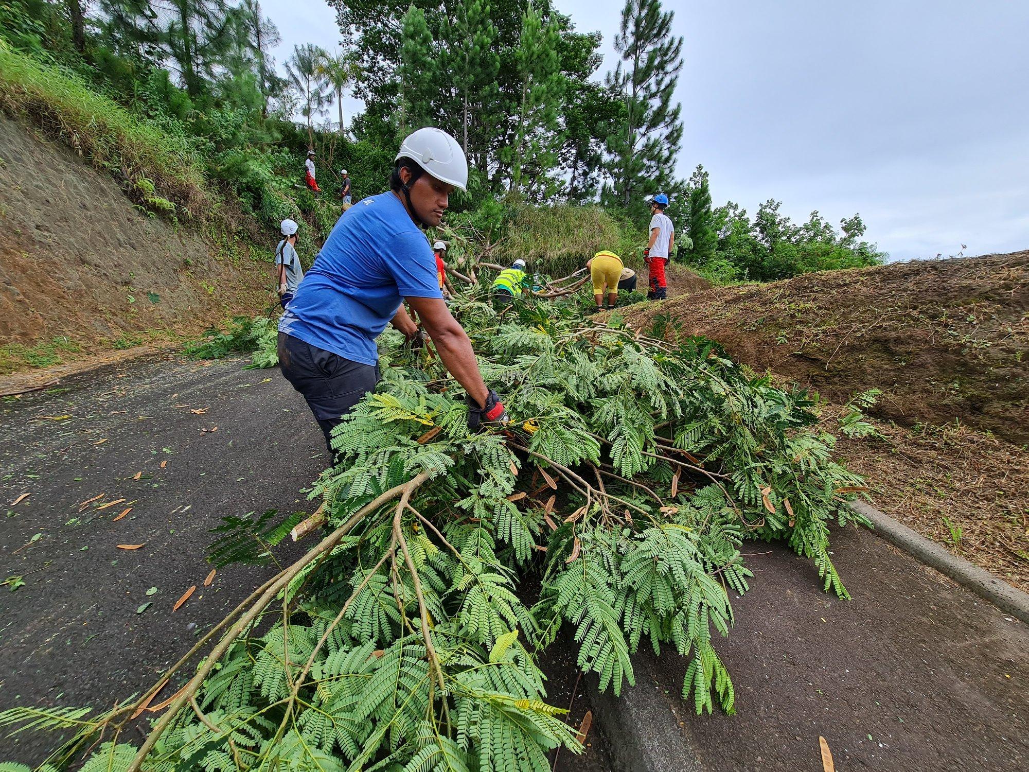 Onze demandeurs d'emploi formés au jardinage à Punaauia