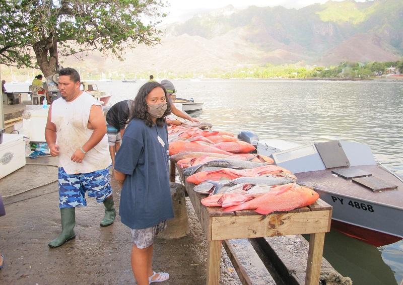Une archéologue de l'UPF à la pêche aux vestiges de pêche aux Marquises