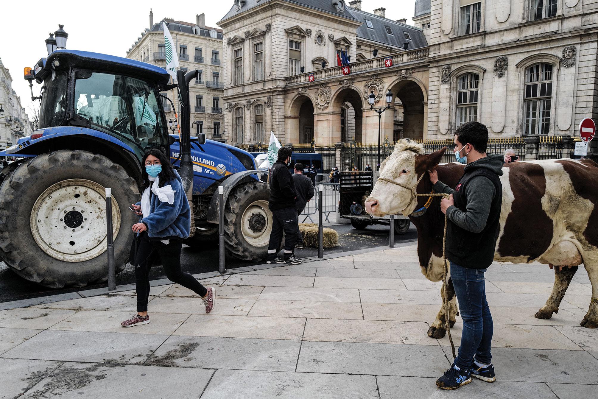 Covid et cantine: des éleveurs protestent contre les menus sans viande à Lyon