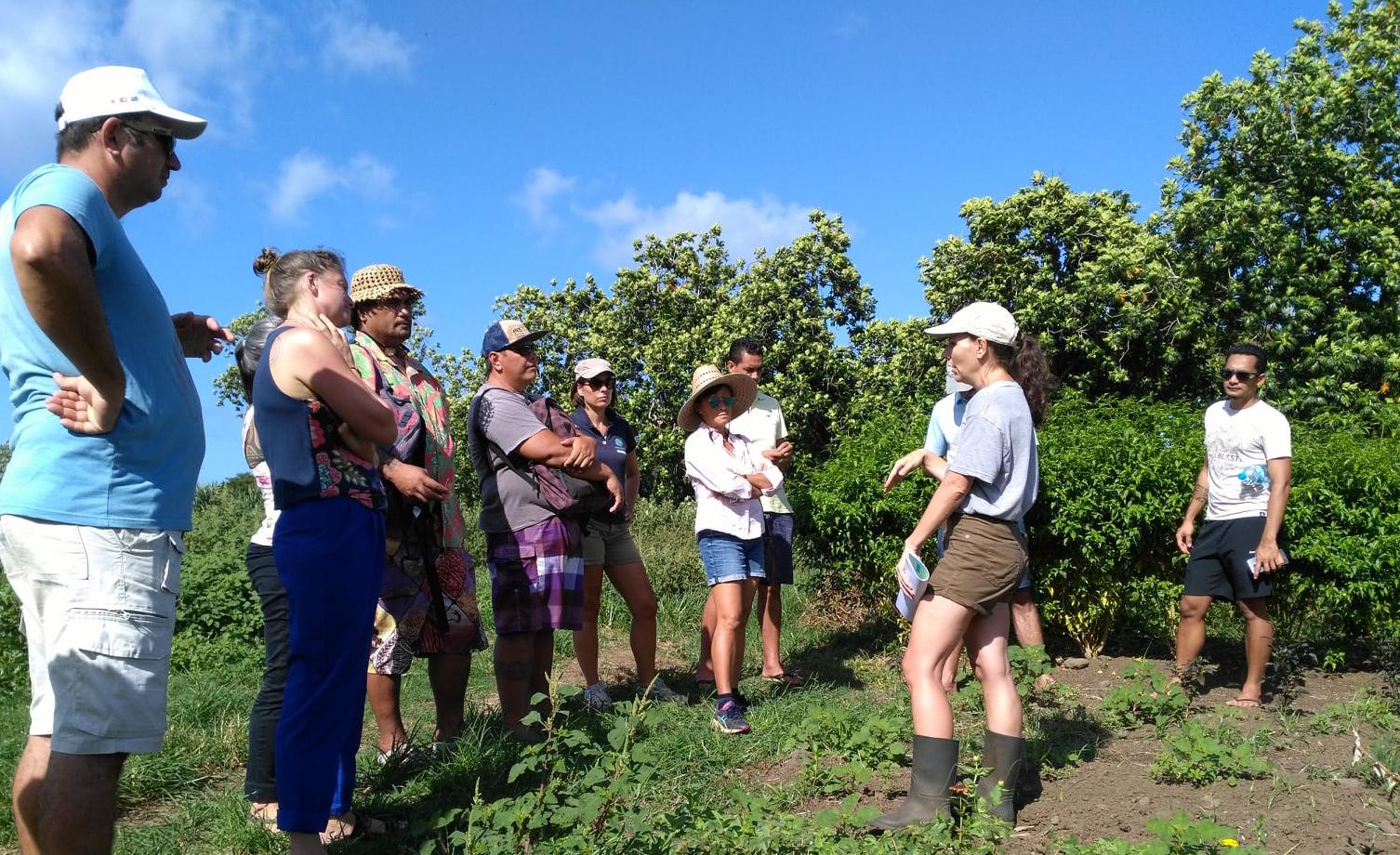 Première réunion du réseau de fermes en agroécologie