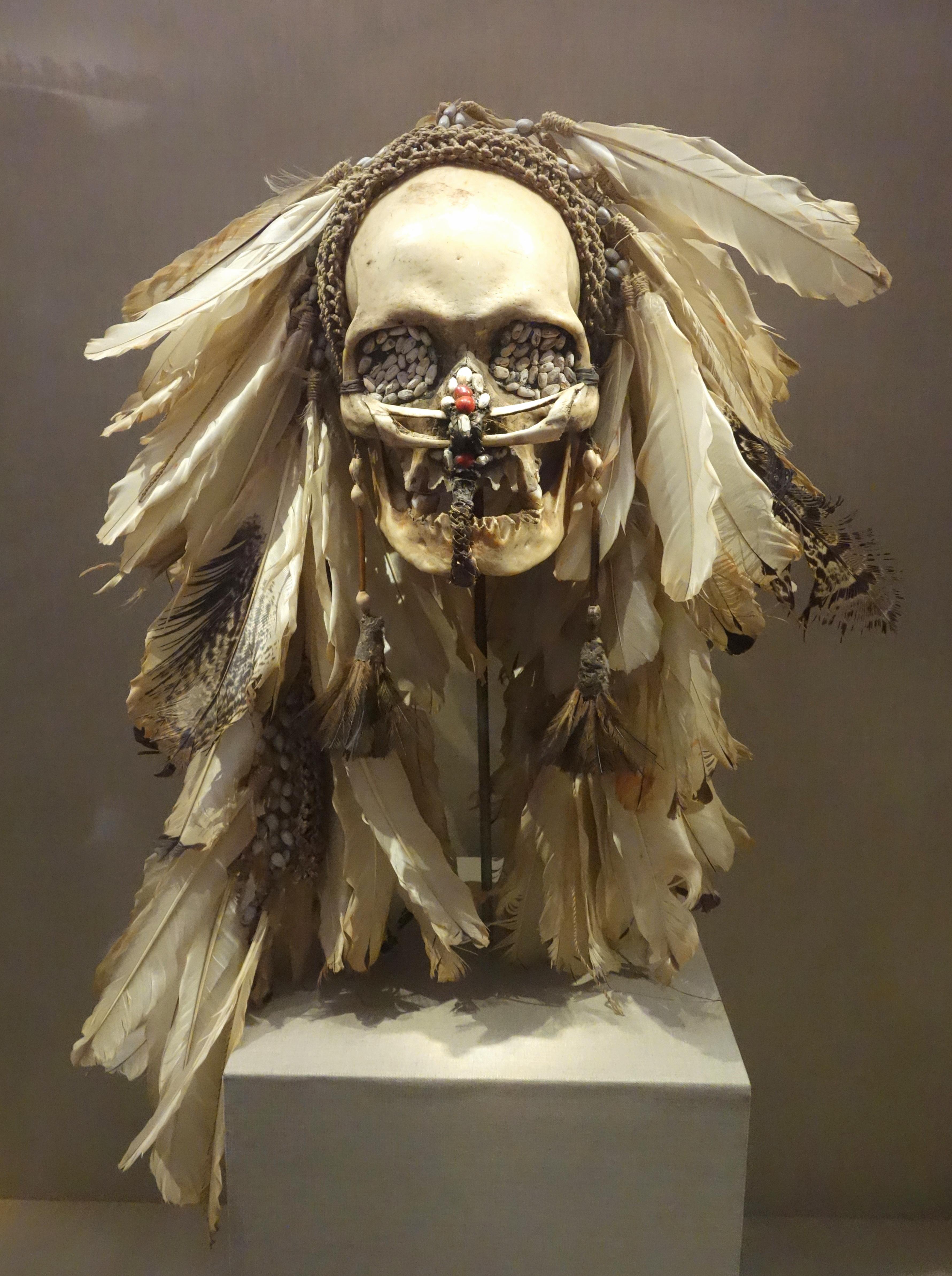 Anciens chasseurs de têtes, les Asmats coupaient certes celles de leurs ennemis, mais ils conservaient aussi soigneusement les crânes de leurs ancêtres à qui ils rendaient hommage en les ornant de riches parures. La tête de Michael Rockefeller a-t-elle fini sous la forme d'un trophée de ce type ?