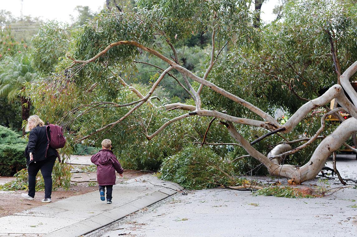 L'ouest de l'Australie balayé par le cyclone Seroja