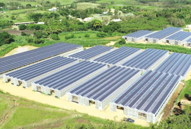 Exemple de projet de ferme agrisolaire en Nouvelle-Calédonie