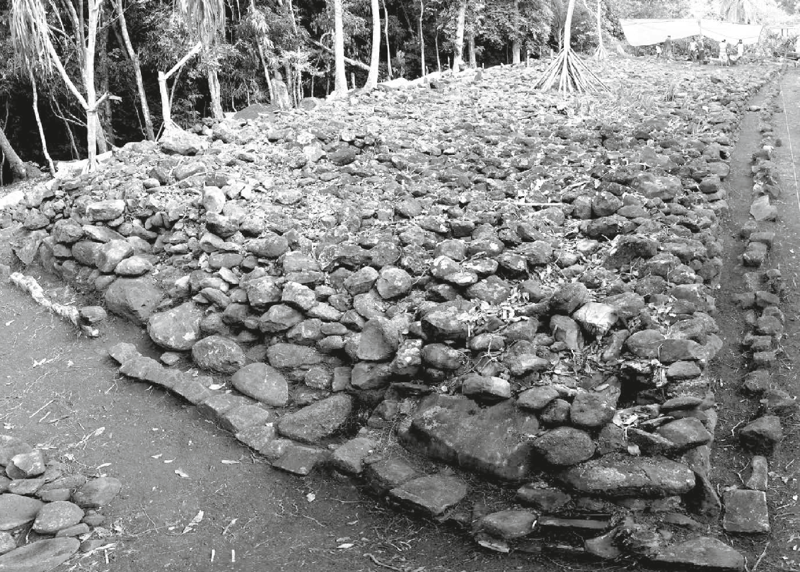 Pererau, un tahua renaît de ses ruines après 10 ans de restauration
