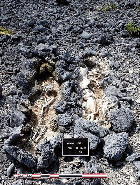 Ces deux sépultures primaires individuelles ont été mises en place selon un schéma similaire : le sol corallien a d'abord été légèrement creusé, et les cadavres ont été déposés avant de construire les parois et la couverture des coffrages.