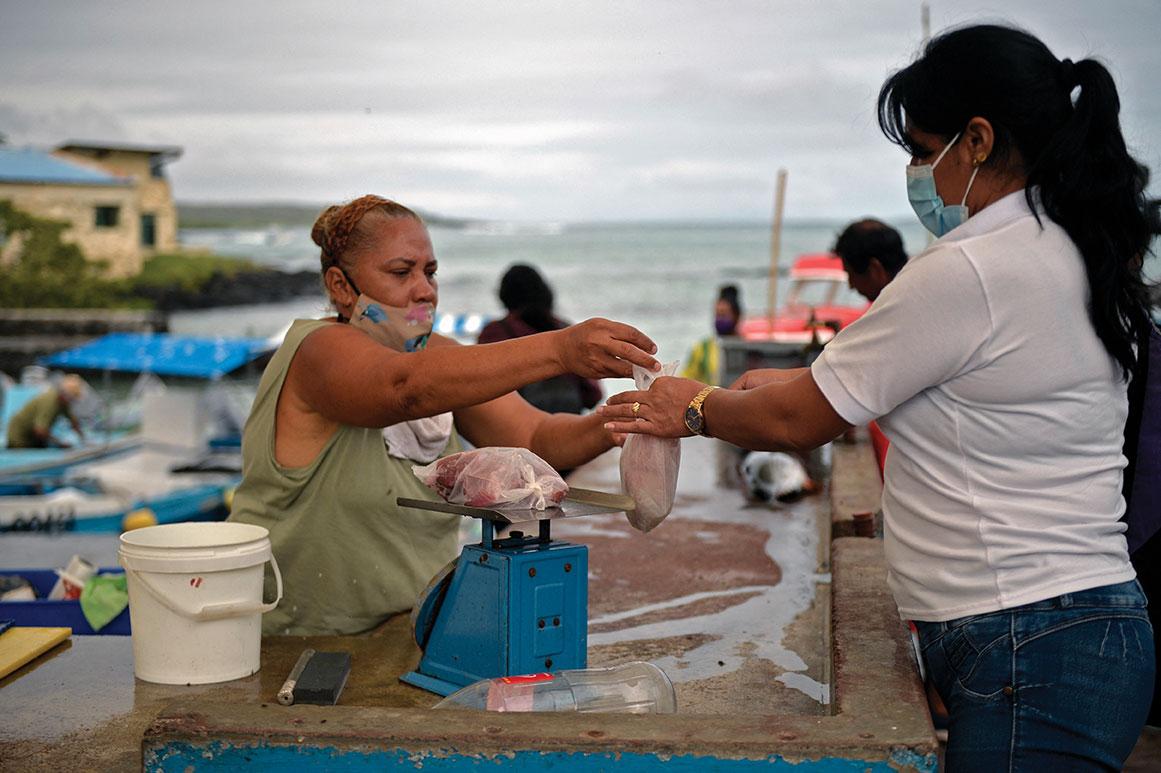 Les femmes des Galapagos, force invisible des champs et de l'océan