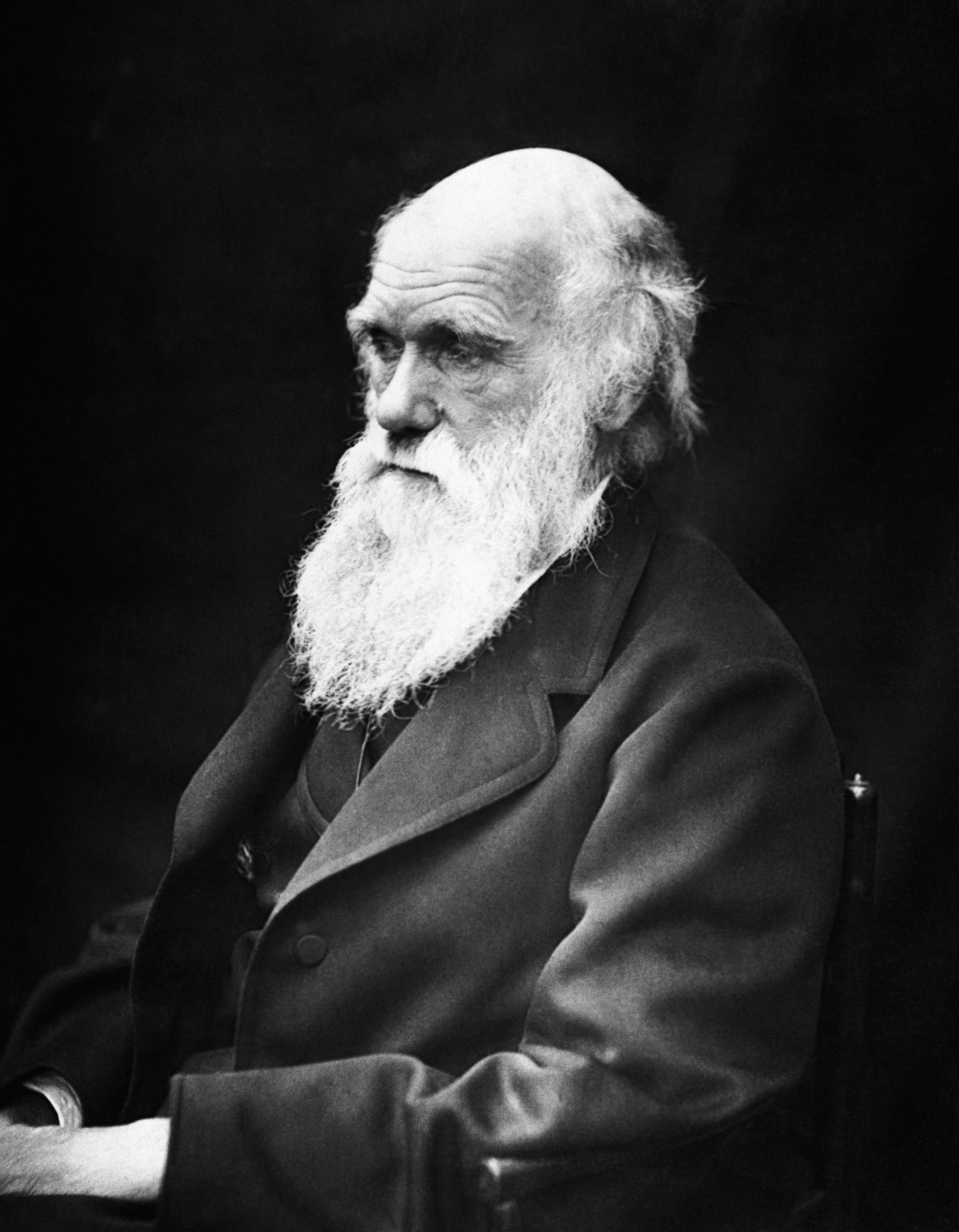 La visite de Charles Darwin aux Tuamotu, et notamment à Fakarava, lui permit, quelques années plus tard, d'expliquer la formation des atolls, restes de volcans dont seul ce qui fut le récif frangeant est apparent.