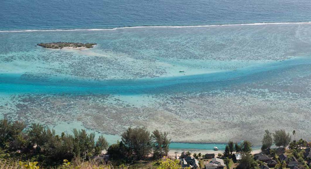Tiahura au nord-ouest de l'île de Moorea, est très certainement la tranche de récif la mieux connue au monde après cinq décennies de travaux publiés.