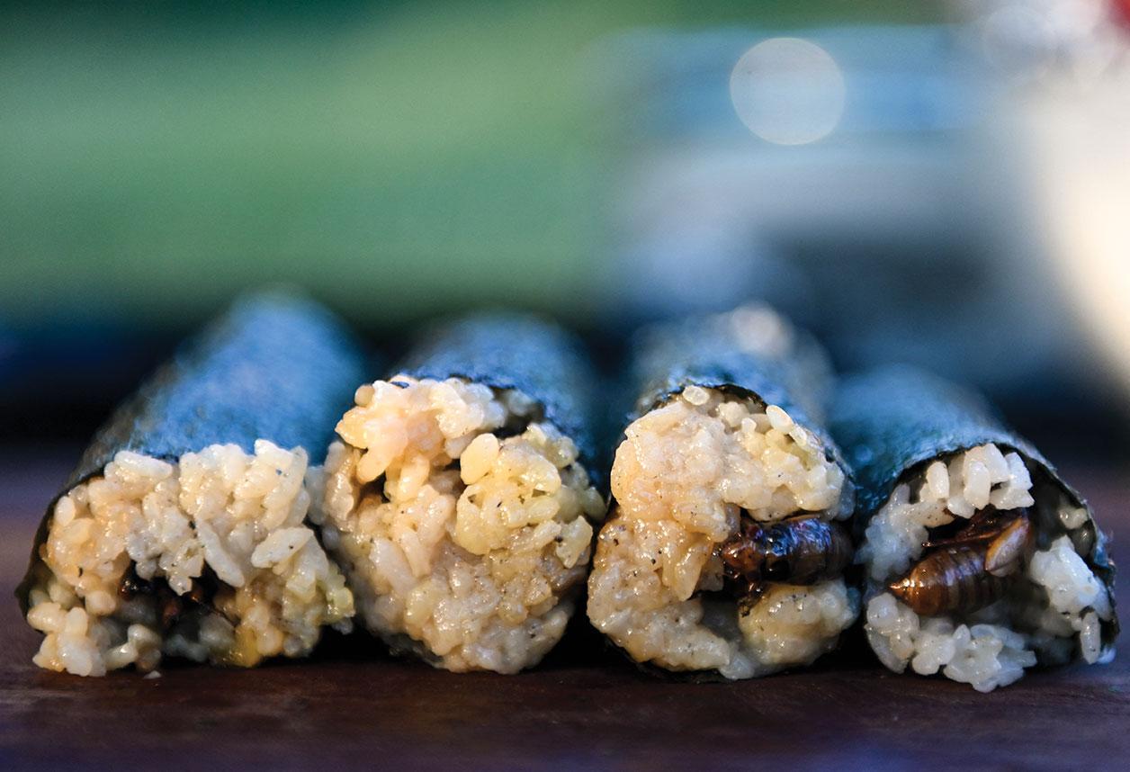 Au menu: des sushis à la cigale, invention d'un chef de Washington