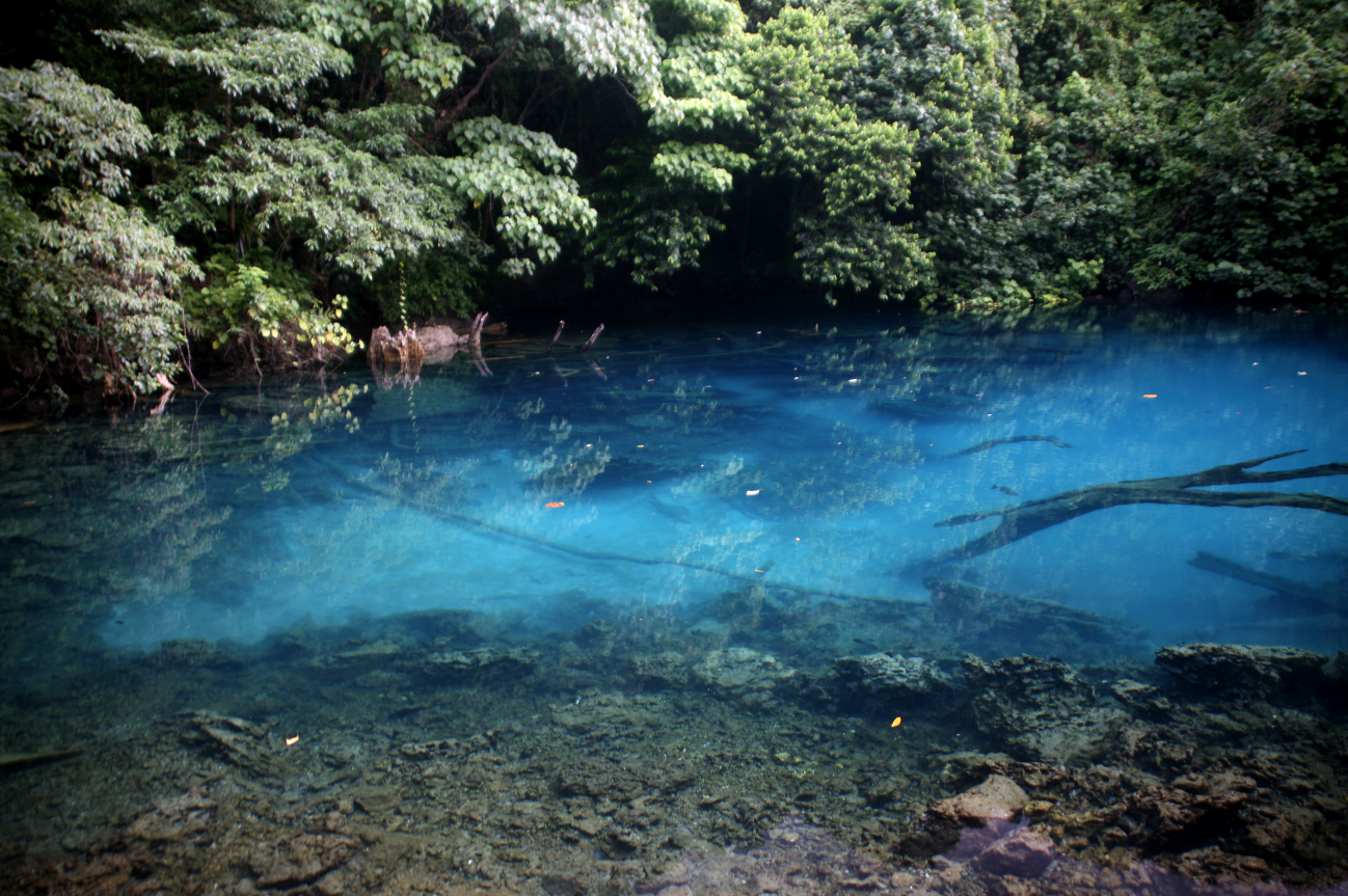 Un trou bleu non aménagé, près de Port Olry. Les spéléologues commencent seulement à explorer ces réseaux souterrains noyés. C'est dans la partie karstique, c'est-à-dire calcaire, que ces petits lacs se sont formés, après l'effondrement du plafond de certaines grottes.