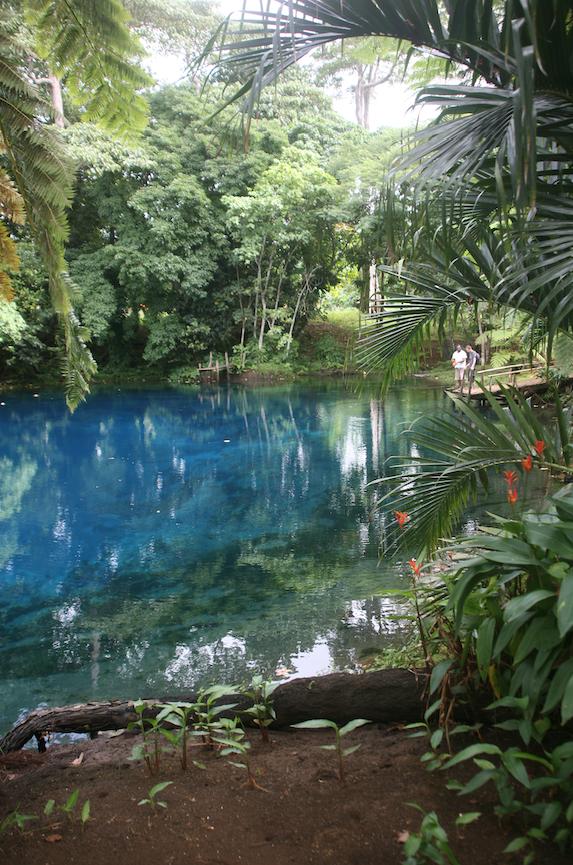 Pour découvrir les trous bleus de Santo, vous aurez besoin d'un guide. Respectez ses consignes : dans certains de ces bassins naturels, on peut se baigner avec palmes masque et tuba, on peut même plonger en scaphandre autonome ; mais dans d'autres, il existe un tabu tribal. Seul le guide connaît les règles qui régissent ces curiosités géologiques.