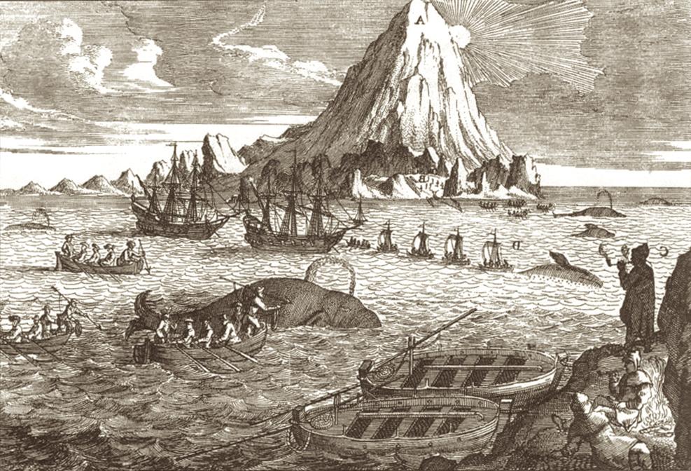 Ce sont les baleiniers essentiellement qui écrivirent l'histoire des Galápagos au XVIIIe siècle.