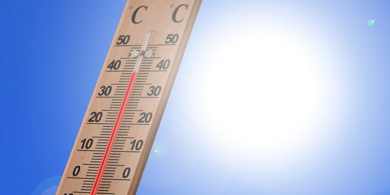 Solastalgie et thermomètre mouillé: quand le réchauffement climatique change le langage