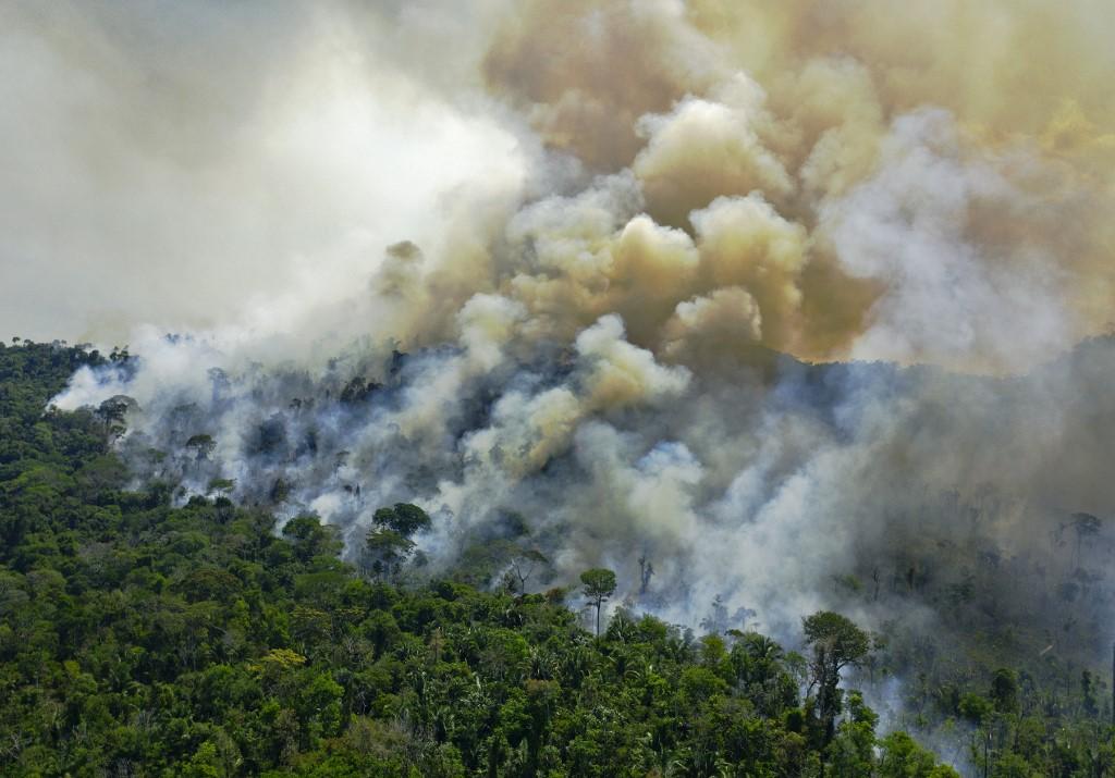 Amazonie : le Brésil n'atteindra pas son objectif de réduction de la déforestation