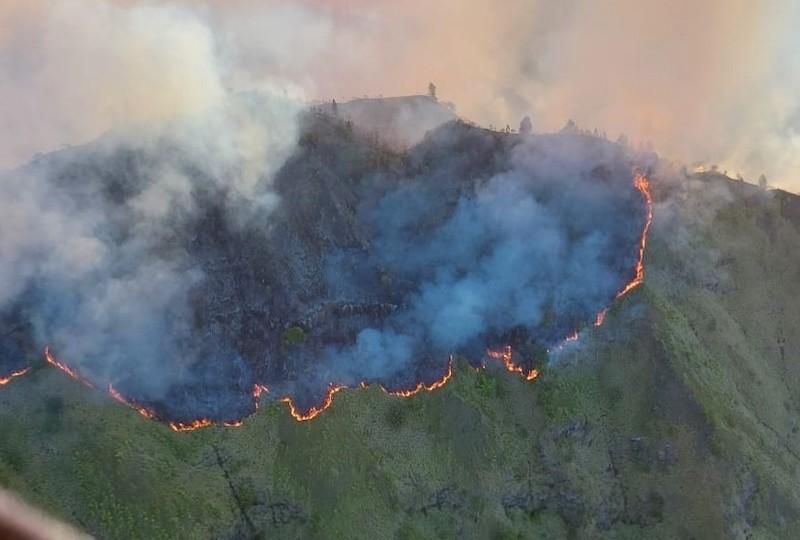 Depuis mardi après-midi le feu a ravagé 400 hectares de forêt.