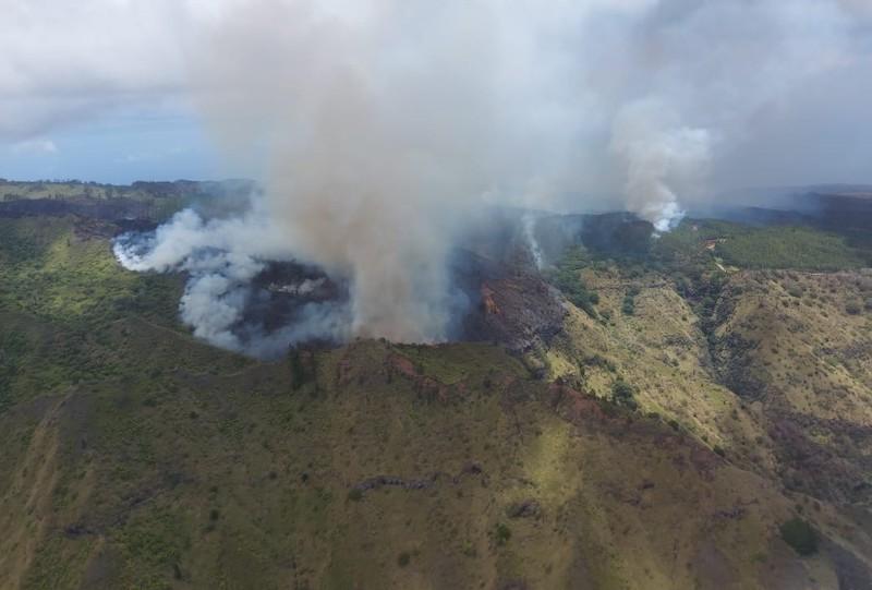 La zone incendiée abrite des espèces végétales endémiques des Marquises, de nombreux santals et des habitats de Upe, un oiseau endémique de Nuku Hiva.