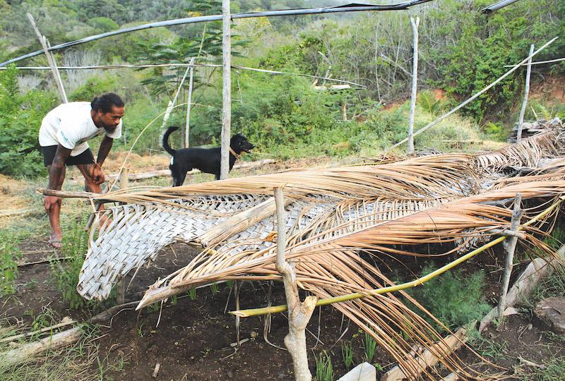 L'île de Ua Pou, connaît environ 6 mois de sécheresse par an. Un véritable challenge pour les agriculteurs.