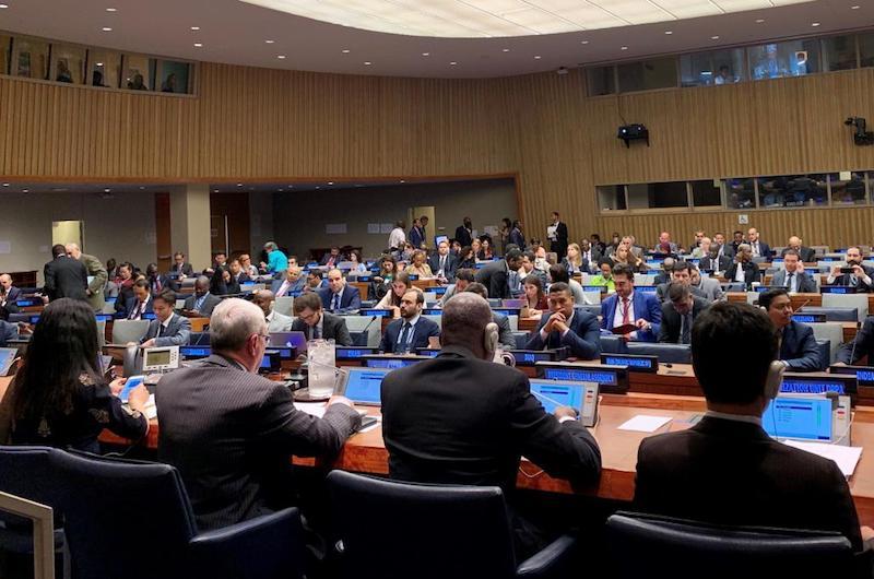 Fritch et Brotherson à l'ONU