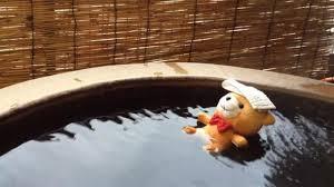 Au Japon, les ours en peluche aussi ont leur agence de voyage