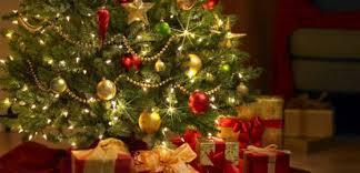 Choisir le sapin de Noël qui vous va...un mathématicien bûche sur la question