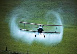 L'UE lance une mise en garde inédite contre des pesticides pour toxicité humaine