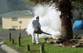 Les campagnes d'épandages réguliers d'insecticides se poursuivent dans les zones cibles,