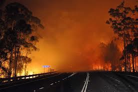 Des feux de brousse de plus en plus violents dans le sud de l'Australie, un mort
