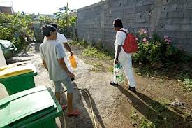 """La lutte contre le chikungunya """"priorité numéro 1"""" en Guyane (ARS)"""