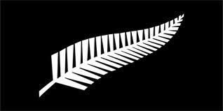 La Nouvelle-Zélande pourrait adopter la fougère des All Blacks sur son drapeau