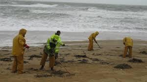 Arrivée de nouvelles galettes d'hydrocarbures sur des plages de l'Atlantique