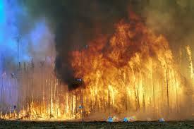 Australie: de nouveaux incendies violents détruisent des habitations