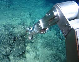 Des scientifiques sonnent l'alarme sur l'exploitation des fonds marins