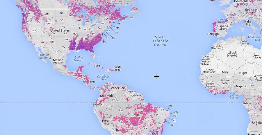 Google lance un observatoire mondial de la déforestation